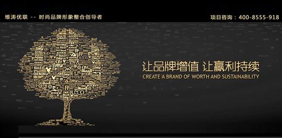 维涛优联vtyl 品牌形象整合设计