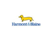 小黄狗Harmont&Blaine