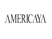 美国雅鞋业品牌