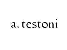 铁狮东尼A TESTONI