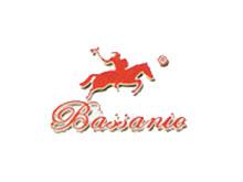 巴薩尼奧皮革皮草品牌