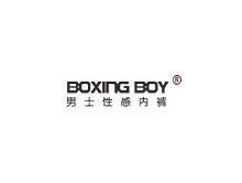 Boxing Boy内衣品牌