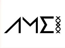AMEI鞋业品牌
