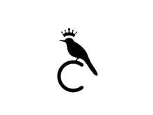 CAI鞋业品牌