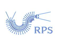 RPS鞋业品牌