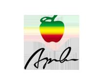 苹果男装品牌