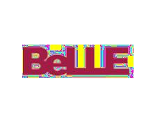 百丽BeLLE