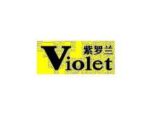 紫罗兰Violet