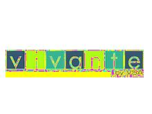 vivante围巾丝巾品牌