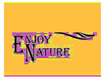 英奈儿围巾丝巾品牌
