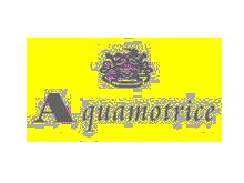 Aquamotrice男装品牌
