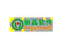 丽晶软件REGENTSOFT
