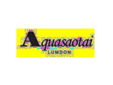 雅阁奥泰Aquasaotai