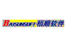 栢顺软件BAISUNSOFT