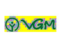 VGM男装品牌