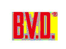 B.V.D内衣品牌
