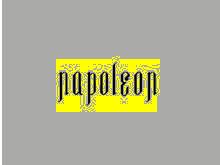 拿破仑男装NAPOLEON