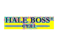 哈里波士HALE BOSS