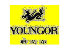 雅戈尔youngor