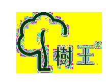 树王TREESPIRIT
