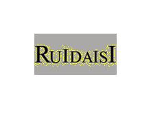 瑞黛斯RUIDAISI