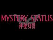 神秘身份mystery status