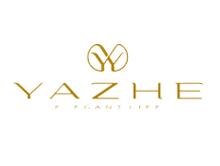 雅哲YAZHE