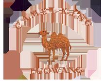 骆驼皮具箱包品牌