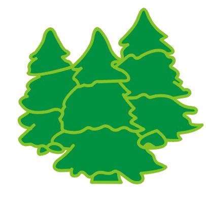 小森林针织有限公司