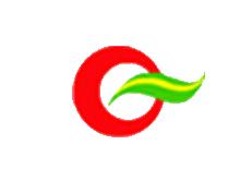 安徽省桐城市双龙丝绸有限责任公司