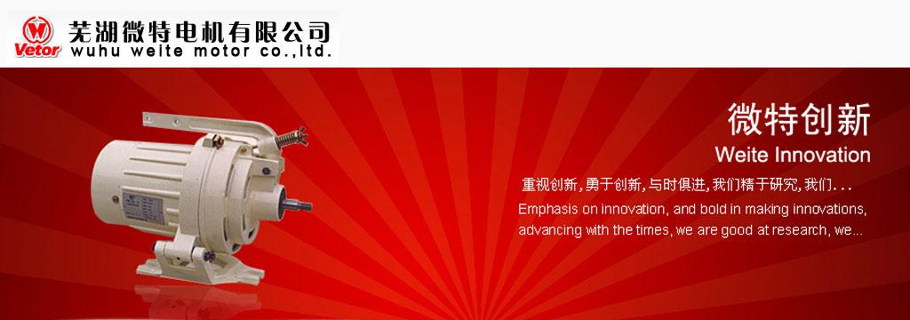 芜湖微特电机有限公司