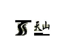 新疆天山毛纺织股份有限公司(SS)