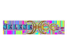Selene:Hee女装品牌服饰公司