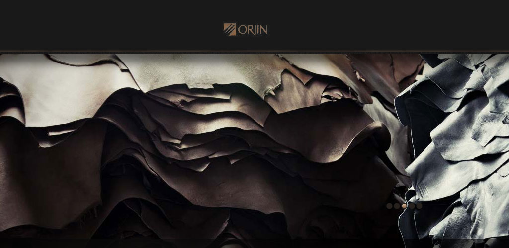 Aydinli Deri/Orjin Group