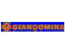 GIANCOMINA CO.箱包公司