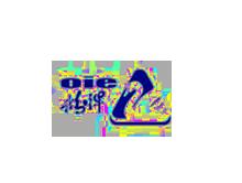 上海三枪(集团)有限公司(鹅牌)