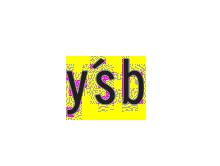 ysb21服裝公司