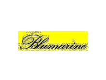 意大利蓝色情人Blumarine服饰公司