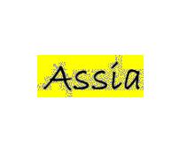 法国Assia内衣服饰公司