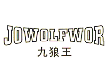 美国九狼王控股集团有限公司