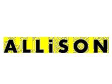 意大利Allison眼镜品牌公司