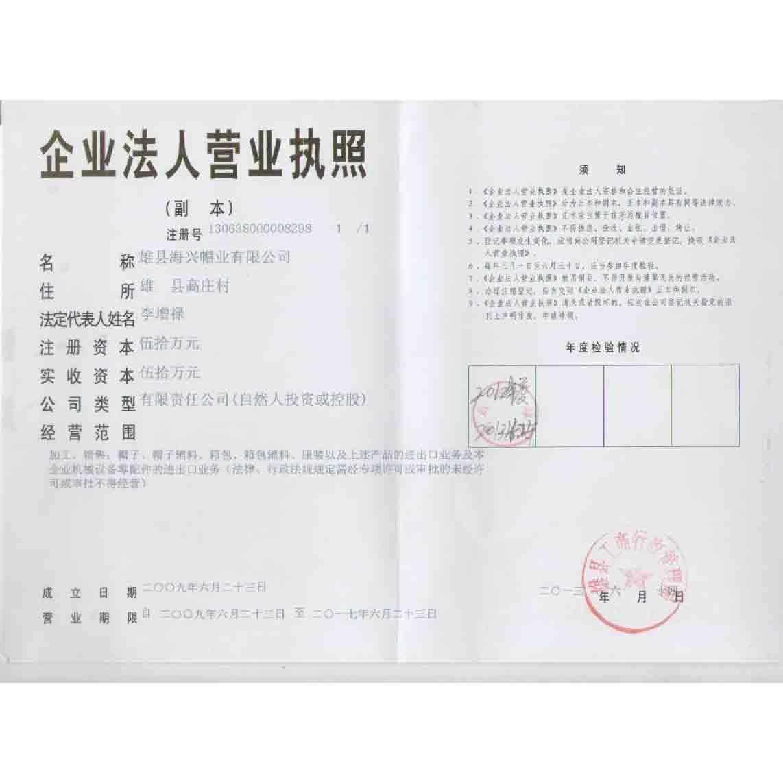 雄县海兴帽业有限公司企业档案