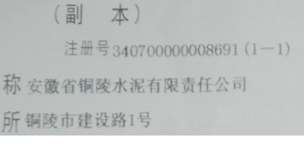 省铜陵水泥有限公司