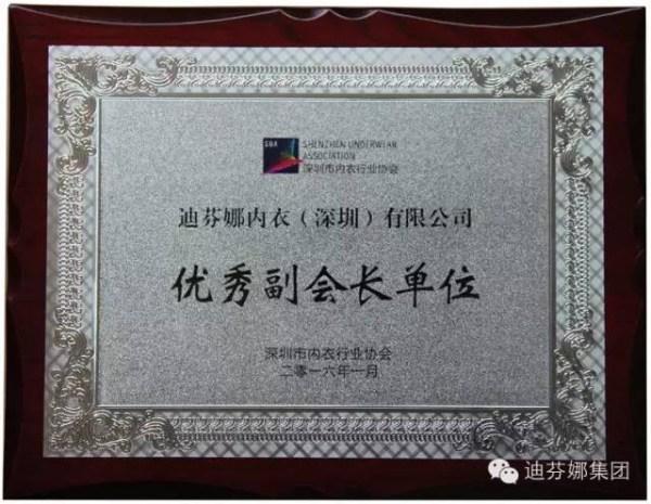 """迪芬娜被评为""""内衣行业协会优秀副会长""""单位"""