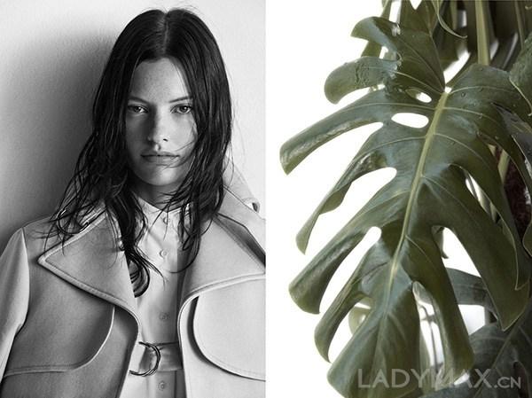 ZARA被指在广告大片和模特上全部复制Céline