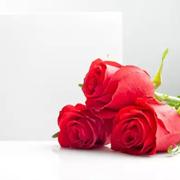JYGUGGE古歌 ll 2016早春红色系列单品