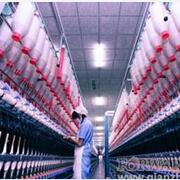 """纺织服装产业集群:新春转型""""忙""""什么?"""
