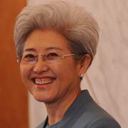 傅瑩四次亮相全國人大會議 偏愛藍色服裝