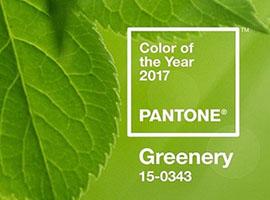 """彩通发布的2017年度色有人叫它""""美元绿"""""""