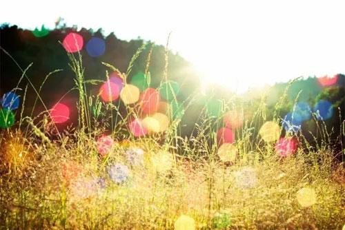 布衣草人2017春夏订货会 最有料的订货会